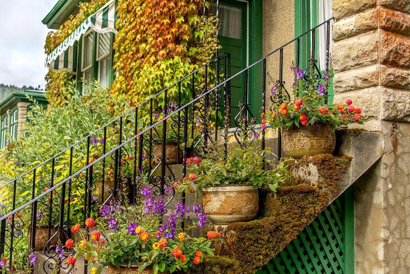Fleurige planten en bloemen op trap in tuin Butchart Gardens, Canada van Jille Zuidema