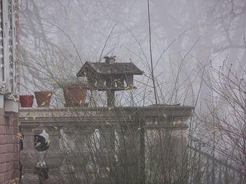 Nebel 07 von Ilona Picha-Höberth