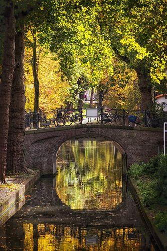 De Nieuwegracht in Utrecht in de herfst (1) van