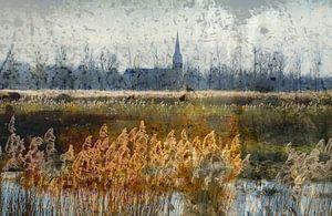 Noord-Hollands landschap