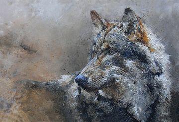 Wolf von Peter van Loenhout