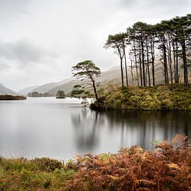 Eilean Na Moine (Insel) Glencoe Schottland von Ab Wubben