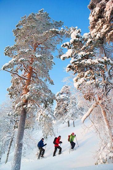 Sneeuwschoenwandelen Finland van Menno Boermans