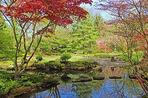 Japanse tuin Clingendael van Wilma Overwijn
