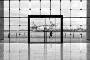 Hamburger Containerterminal in schwarzweiß von Tilo Grellmann | Photography