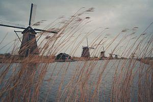 Molens van Kinderdijk van Jaap Burggraaf