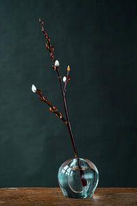 Foto print van wilgenkatjes in glazen vaasje tegen donkere achtergrond van Jenneke Boeijink