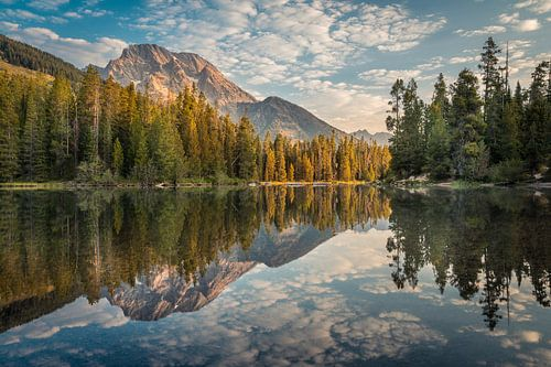 Reflectie van de bergen #2 van