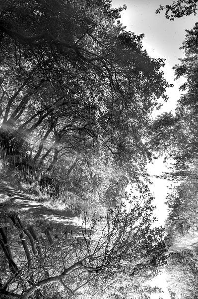 Twisted reflections en noir et blanc sur Anouschka Hendriks