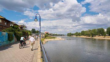 Wandelen aan de oevers van de Elbe bij Maagdenburg in de zomer van Heiko Kueverling