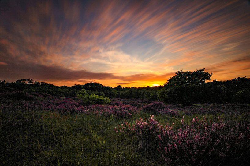 Zonsondergang op de heidde van Maurice Hoogeboom