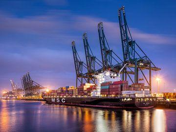Grote container schip afgemeerd in de haven van Antwerpen van Tony Vingerhoets