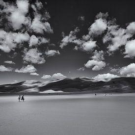The Long Walk van Peter Bongers