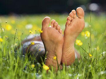 Even relaxen op een grasveldje tussen de bloemen van