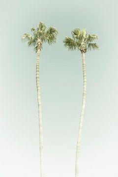 Vintage Palmenidylle von Melanie Viola