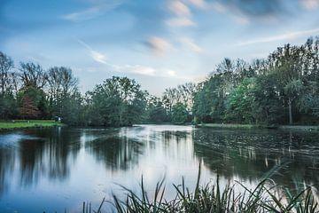 Vlaamse Ardennen van Wim van D