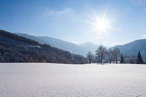 Een zonnig winterlandschap in de bergen van