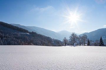 Sonnige Winteridylle von Coen Weesjes