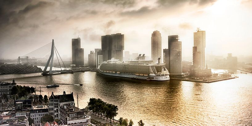 The Oasis of the Seas in Rotterdam van Sylvester Lobé