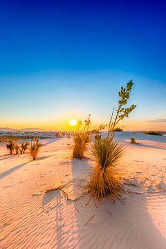 Coucher de soleil sur le Monument national de White Sands sur Melanie Viola
