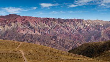 Berg met veertien kleuren (Cerro de los catorce colores) van Nadine Folkertsma