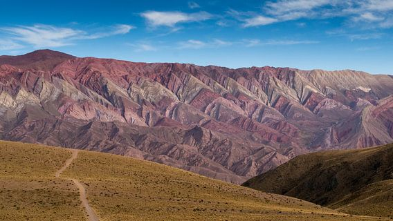 Berg met veertien kleuren (Cerro de los catorce colores)