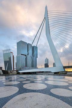 Erasmusbrücke von Prachtig Rotterdam