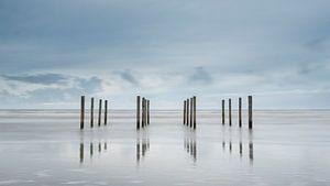 Palen op het strand van Schiermonnikoog  van Sigrid Westerbaan