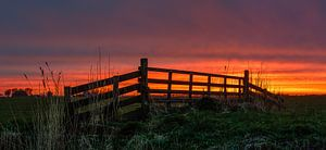 Zonsondergang achter het hek van
