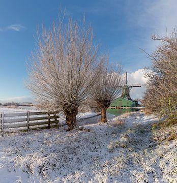 Windmühle und Papierfabrik De Schoolmeester, Westzaan, Nord-Holland, Niederlande von Rene van der Meer
