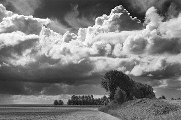 Zeeuws landschap von Georges Hoeberechts