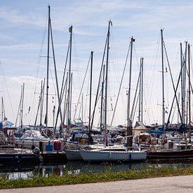 The harbour of Terschelling, The Netherlands van Jeroen van Esseveldt