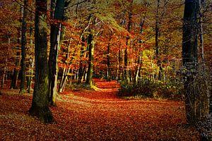 Herfst Tafereel 2 van Koen Lambooij