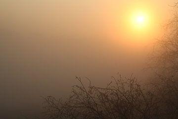 Zonsopkomst door de mist op een vroege lenteochtend van Maarten Pietersma