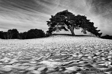 Zandverstuiving in zwart-wit van Jos Reimering