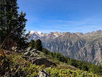 Alpenblick von Marieke Funke