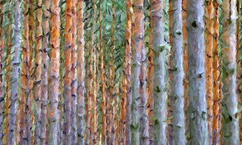 Bäume abstrakt von Marion Tenbergen