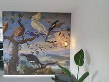 Klantfoto: Exotische vogels Brafa, Jan van Kessel van Meesterlijcke Meesters, op naadloos behang