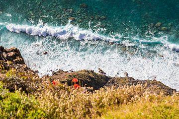 Steile kust en zee op Madeira van Werner Dieterich
