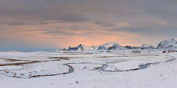 Arctisch winterlicht - Mooie Lofoten van Rolf Schnepp