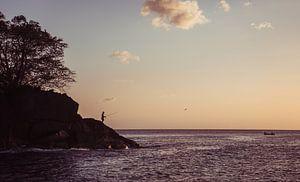 Vissen bij zonsondergang van Bert Broer