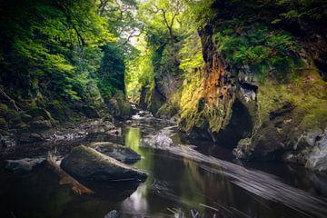 Fairy Glen Gorge van Harald Meert
