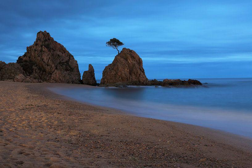Rocher connu sur la plage sur Frank Herrmann