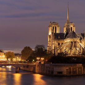 Notre Dame van Ab Wubben
