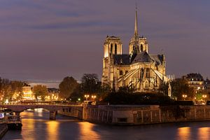 Notre Dame van