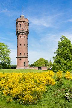 Twentse stenen watertoren met bloeiende gele brem van Ben Schonewille