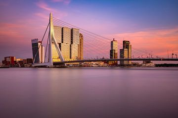 Erasmusbrug en De Rotterdam van Ronne Vinkx