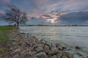 Fluss Lek am Groot-Ammers von Adrian Visser