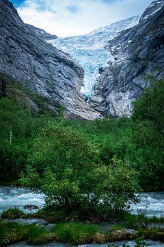 Gletscher Briksdalsbreen mit Baum von Jayzon Photo