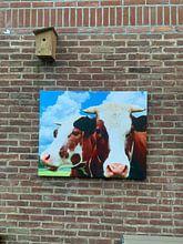 Klantfoto: Roodbonte koe met horens van Hendrik-Jan Kornelis, op canvas